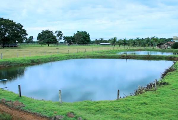 Infiltra o em viveiros escavados destinados cria o de for Elaboracion de estanques para piscicultura