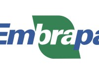 Embrapa: Podcast Ideas for Milk