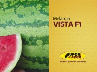 Melancia Vista - Superseed