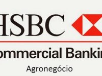 "Vídeo Palestra: 8º Hangout HSBC Global Connections. ""Agronegócios – o Brasil como protagonista mundial"""