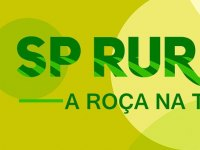 Programa SP Rural: A ROÇA NA TV -N°18