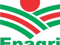Epagri: Energias alternativas no campo